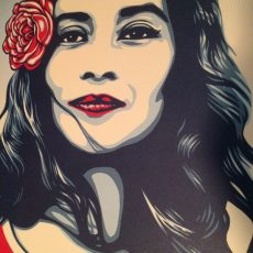 New free prints- Shepard Fairey?!?
